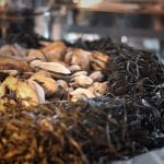 lobster bake steamers